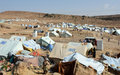 More than 3 million displaced in Yemen – joint UN agency report