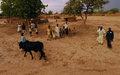 La FAO publie un premier atlas sur les migrations rurales en Afrique subsaharienne