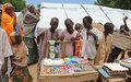 UN migration chief visits Nigeria's northeast; new fund allocates $10.5 million