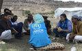Aumentan las necesidades humanitarias en la costa oeste de Yemen